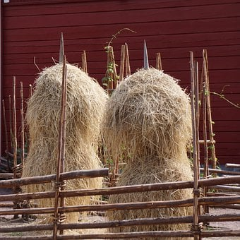 Haymaking, Hay Pole, Old-time, Plug-fence, Finnish