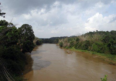 River, Cauvery, Kaveri, Monsoon Flow, Kodagu, India