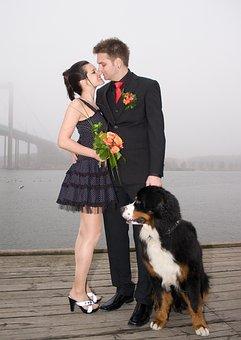 Gothenburg, Married, Wedding, Coupple, Love, Together