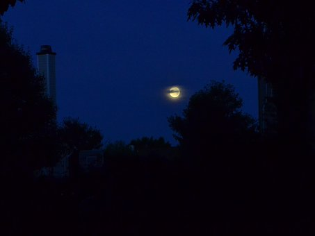 Night, Moon, Setting Moon, Inky Sky, Sky, Dark, Morning