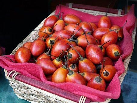 Tree Tomato, Tamarillo, Fruit, Healthy, Nutrition