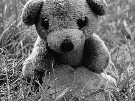 Teddy Bear, Teddy, Mascot, Soft Toy, In The Grass