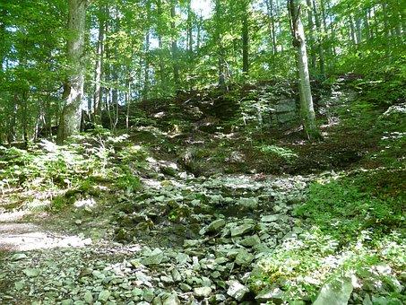 Forest, Bach, Source, Louder Origin, Lautertal