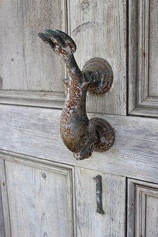 Door, Handle, Entrance, Dolphin, Fish, Wood, Home, Lock