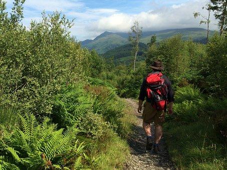 West Highland Way, Scotland, Walking, Scottish, Scenery