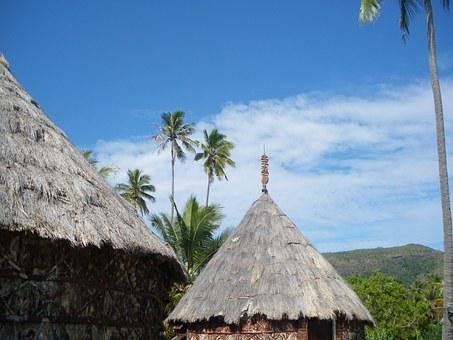 Box, Coconut, New Caledonia, Straw