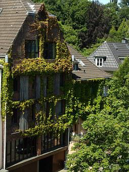 Home, Architecture, Green, Building, Facade, Old, Live