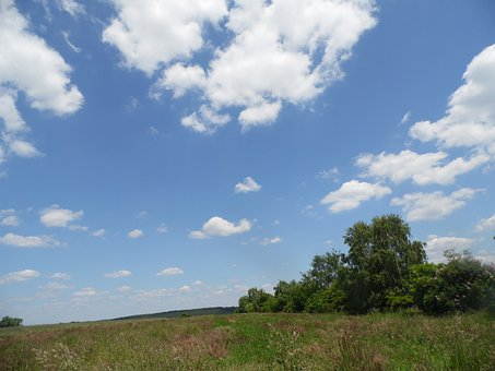 Clouds, Nature, Sky, Sun, Weather, Tree, Blue, Summer