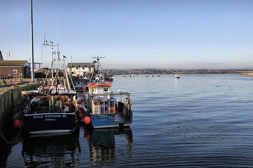 Amble, Northumberland, Harbour, Boats, Fishing, Uk