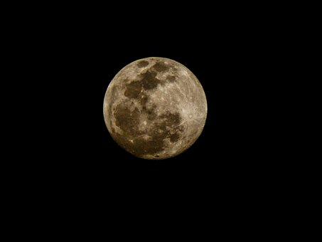 Full Moon, Moon, Night, Sky, Crater, Nature, Night Sky