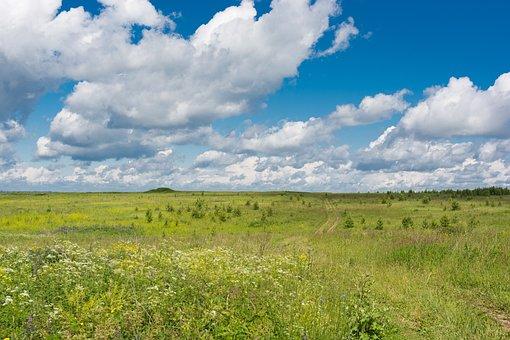 Field, Sky, Clouds, Landscape, Open Space, Nature