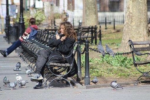 Person, Bird, Birds, Park, New York, Homeless