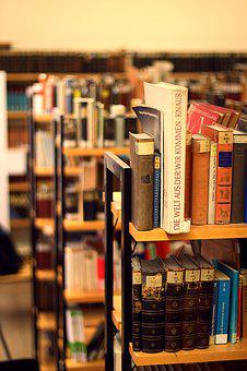 Books, Library, Shelf, Read, Learn, Study, Bookstore