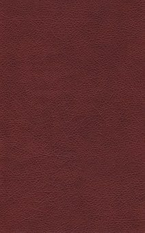 Leather, Textures, Background, Fabric, Raw, Decor