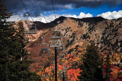 Autumn, Clouds, Conifers, Environment, Fir Trees, High