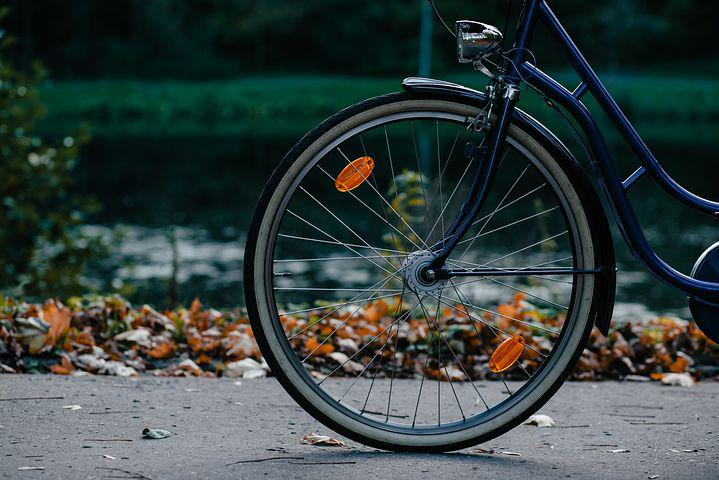 Bicycle, Bike, Biker, Color, Cycle, Cyclist, Fall, Fun