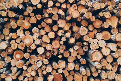 Batch, Close-up, Dry, Firewood, Forestry, Logs, Pattern