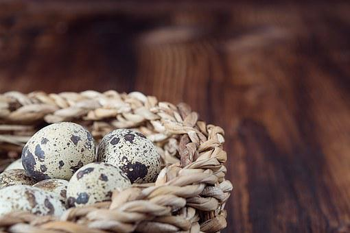 Basket, Egg, Quail Eggs, Natural Product, Small Eggs