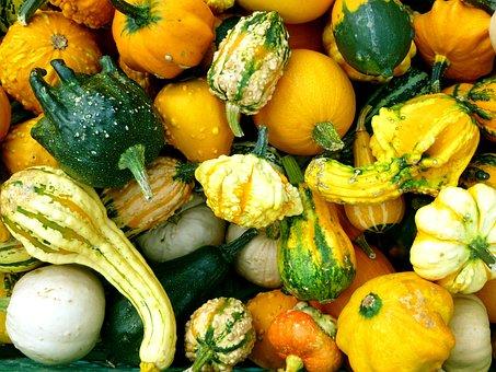 Pumpkins, Cucurbitaceae, Autumn, Vegetables, Orange
