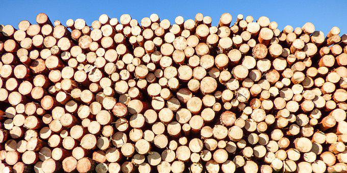 Background, Woodpile, Wood, Logs, Cut, Nature, Timber