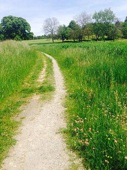 Away, Meadow, Nature, Zollikon, Zurich, Switzerland