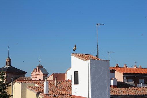 Roofs, Alcalá, Stork, Nature, Alcala De Henares, Spain