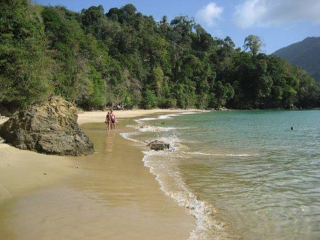 Tobago, Beach, Caribbean, Sea, Leasure, Relax, Travel