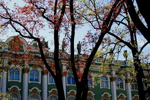Trees, Green, Rust, Winter Palace Wall, Sky