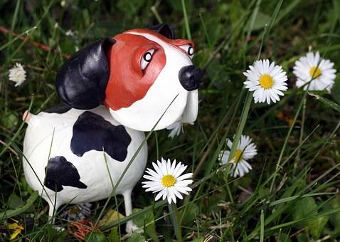 Dog, Flowers, Spring, Green, Daisies