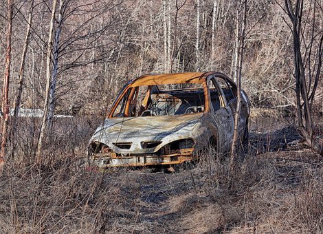 Finland, Abandoned Car, Auto, Automobile, Forest, Trees