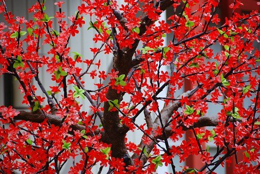 Tree, Branches, Flowers, Red, Artificial, Nature