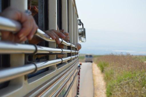 Bus, Lebanon, Roadtrip, Nature, Trip, People, Hands