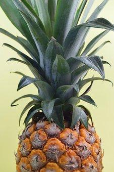 Pineapple, Fresh, Raw, Plant, Sweet, Juicy, Vitamin