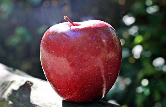 Apple, Red Apple, Red Chief, Red, Fruit, Frisch