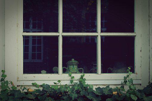 Window, Ivy, Wall, Facade, Green, Fouling, Climber