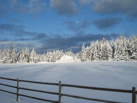 Snow House, Ranch, Winter, Calming, Landscape