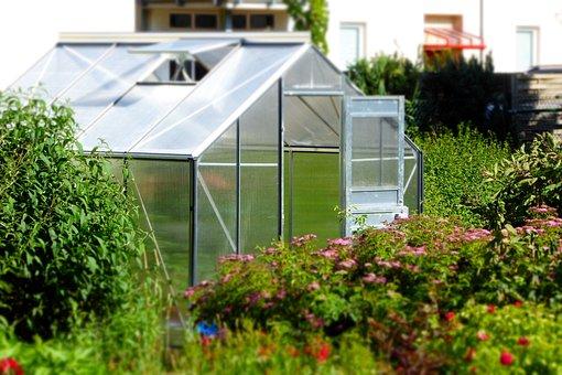 Greenhouse, Garden, Glass House, Planting