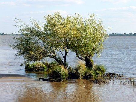 Elbe Beach, Elbe, Bank, Ebb, Nature, Water