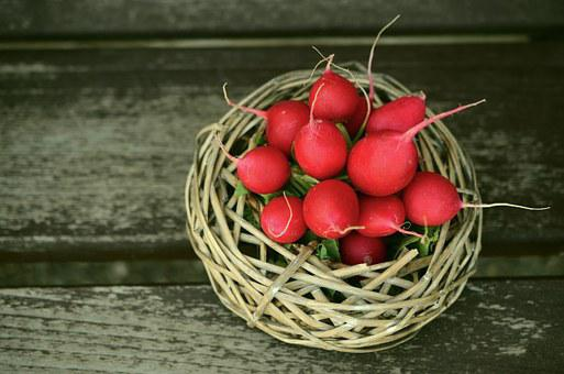 Radishes, Red, Vegetables, Frisch, Federal Government