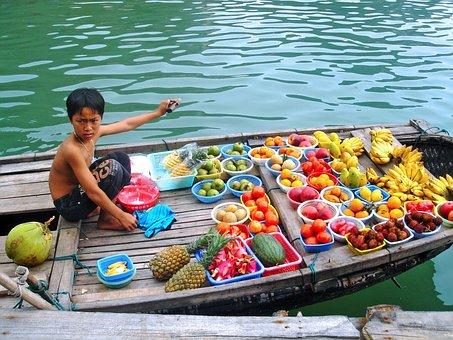 Selling, Fruits, Boy, Delicious, Halong Bay, Bay