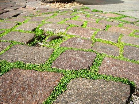 Grass, Green, Nature, Brick, Pathway, Path, Stone