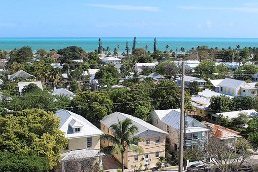 Key West, View From Lighthouse, Florida, Palm Trees