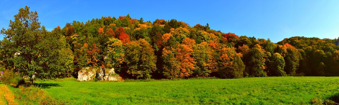The Founding Fathers, Autumn, Poland, The National Park