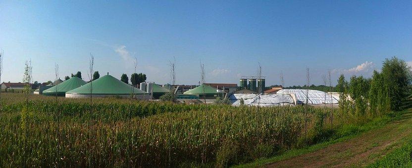 Biogas, Building, Plants, Agriculture