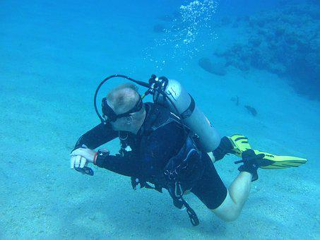 Diver, The Red Sea, Diving, Snorkeling, Coral Reef