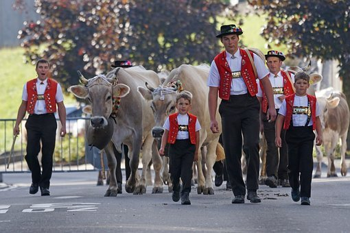 Cattle Show, Appenzell, Village, Sennen, Costume, Cows
