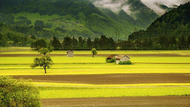 Landscape, Meadow, Field, Mountains, Switzerland