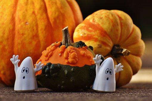Halloween, Ghosts, Pumpkin, Happy Halloween, Ghost