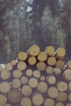 Felling, Slice, Wooden Balls, Stock Photo Of The Tree