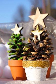 Christmas Tree, Pine Cones, Star, Pot, Clay Pot